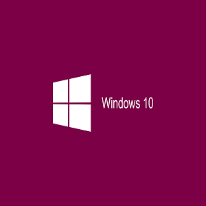 Windows 10 OS Manual Installation